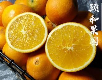 辰颐物语正宗MAX橙——赣南脐橙
