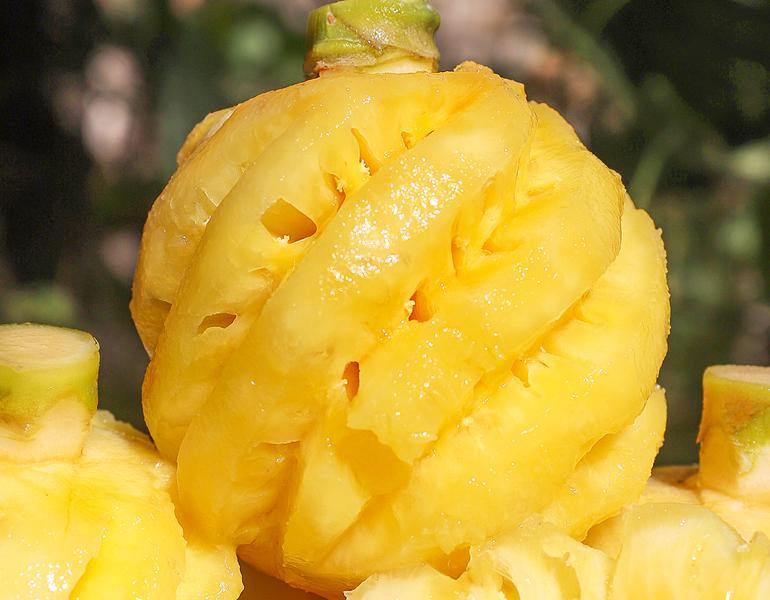 颐和果园:可以当零食吃的水果——泰国小菠萝