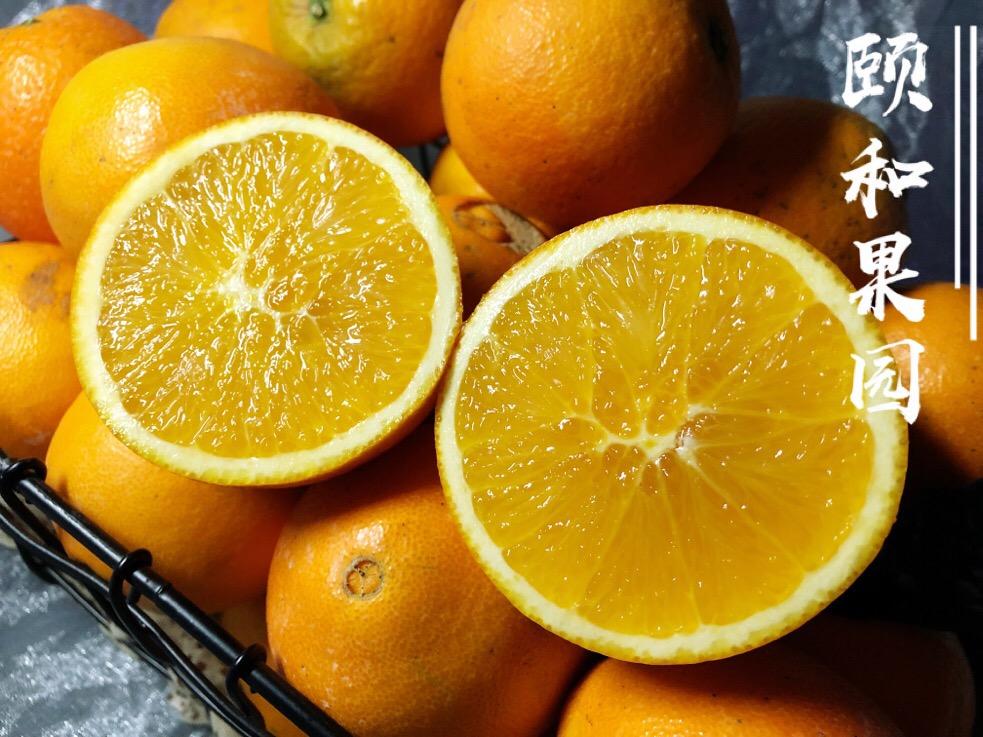 颐和果园正宗MAX橙——赣南脐橙